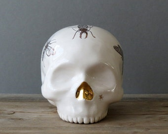 Copper Insect Beetle Skull