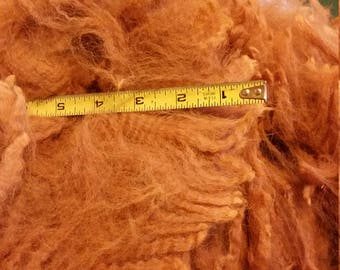 8 oz gorgeous dark fawn raw alpaca fleece