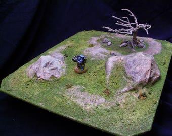 Rocky Field with Dead Tree.