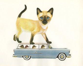 That darn cat. Original collage by Vivienne Strauss