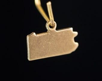 Raw Brass Tiny Pennsylvania Blank State Charm Drops (6) chr228K