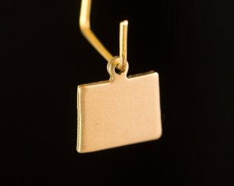 Raw Brass Tiny Colorado Blank State Charm Drops (6) chr228Z