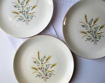 Vintage Canonsburg Wheat Dinner Plates Aqua and Tan Set of Three