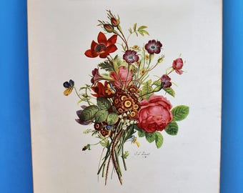 VINTAGE Set of Botanical Art Prints by J L Prevost.  Plates 902, 903, 904, 906