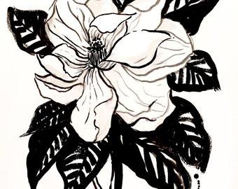 Black and White Magnolia Botanical Illustration Print