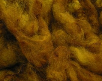 50g Acid Dyed Alpaca Fleece -  Gold