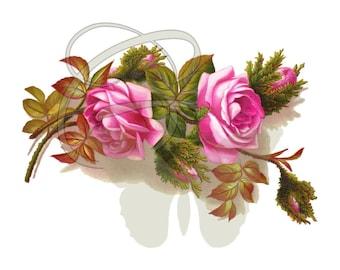 Flower Clipart Rose Scrapbook Floral Crafting Digital Download Illustration Printable