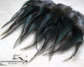 """Cruelty Free Real Black Bird Feathers Black Jersey Giant Rooster Saddle Feathers Natural Real Bird Feathers For Crafts 20 @ 4 - 4.5"""" / BJG9"""