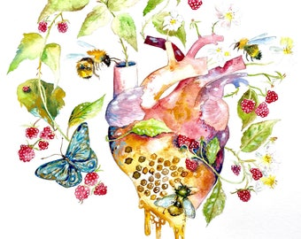 "Anatomical Heart Giclee Print, Bees and Raspberry Art, Watercolor Painting, Garden Heart, Watercolor Heart 8""x10"""