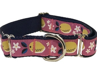 "1"" Pink Lemons Martingale or Buckle Collar, Leash or Harness"