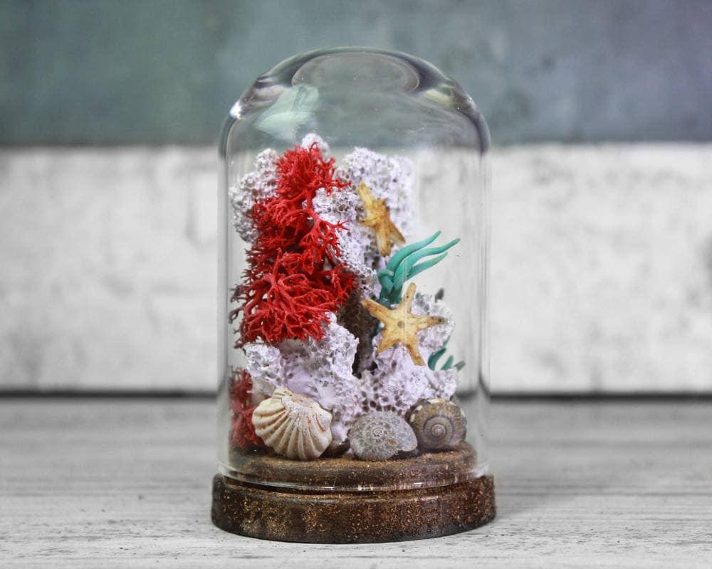 Bulk Starfish Decorations Starfish Etsy