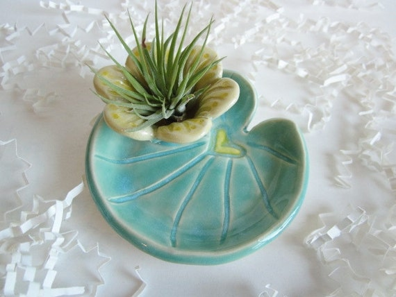 Lily pad air plant planter air plant holder cubicle decor - Cubicle planters ...