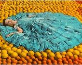 Vintage Florida Postcard - A Florida Blossom among Grapefruit and Oranges (Unused)