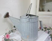 Watering Can Galvanized Metal Sprinkle Can
