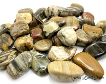 Petrified Wood Tumbled Stone, crystal healing, gemstones, rock hound, wood,