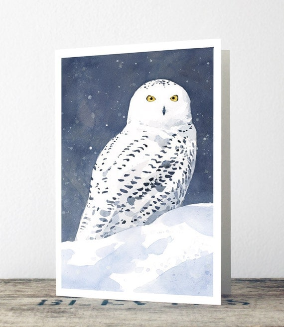 Snowy Owl Christmas Cards Watercolor Greeting Card Holiday