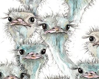 Ostrich Illustration Painting - Watercolour Art -6x4 Print- A4 print set in a mount- farm, animal,modern,art, painting, print, bird, baby,