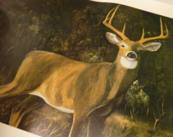 BOB LANIER Signed Print Limited Edition Buck Deer Hunting Picture