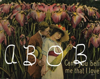 Can You Believe Me That I Love You Victorian Postcard Vintage Digital Graphic of Lady with Hat, Parasol and Handsome Love in a Field of Iris