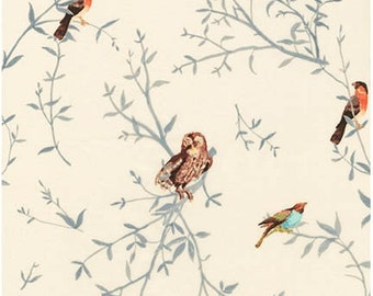 Ivory- Birds In The Trees Lawn- Woodland Clearing- Robert Kaufman Fabrics- 1 yard Fabric