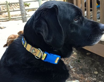 Dog Collar - Native Southwestern with Blue Buckle