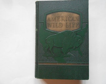 American Wildlife, a Vintage Book, Animal Pictures