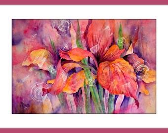 Abstract Iris, Iris Watercolor, Wild Iris Pink - Original Painting