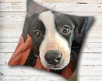 Border Collie, Throw Pillow Cover, Dog Pillow Cover, Puppy Pillow Cover, Dog Lover Gift, Dog Home Decor, Dog Pillow Case, Puppy Pillow Case