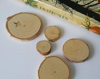 5 little tree trunk magnets, wood manets, botanical magnets