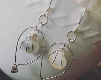 Sterling Silver Hoops With Wired Wrapped Albino Sunrise Shells