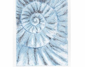 Original ammonite fossil zinc etching no.86 with mixed media jurassic Dorset coast fossil spiral fossil ammonites golden section