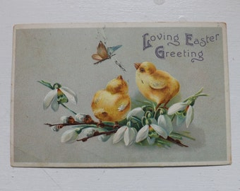 Antique Easter postcard Easter chicks white blossoms and butterfly by International Art Publishing Co. vintage ephemera