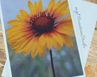 Blanketflower Photo Note Card - Brown-Eyed Susan Wildflowers - Yellow Flower - Montana Nature Photography