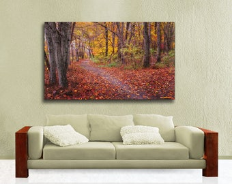 Autumn Path Landscape Photography, Large Canvas Gallery Wrap, Fall Colors, Valley Forge Trail, Ready to Hang Wall Art, Red, Yellow