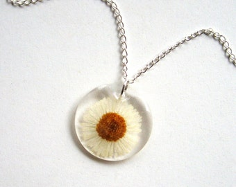 Marguerite - Real Flower Garden Necklace - botanical jewelry, flower necklace, daisy, real flower, daisy, natural, white necklace, eco, ooak