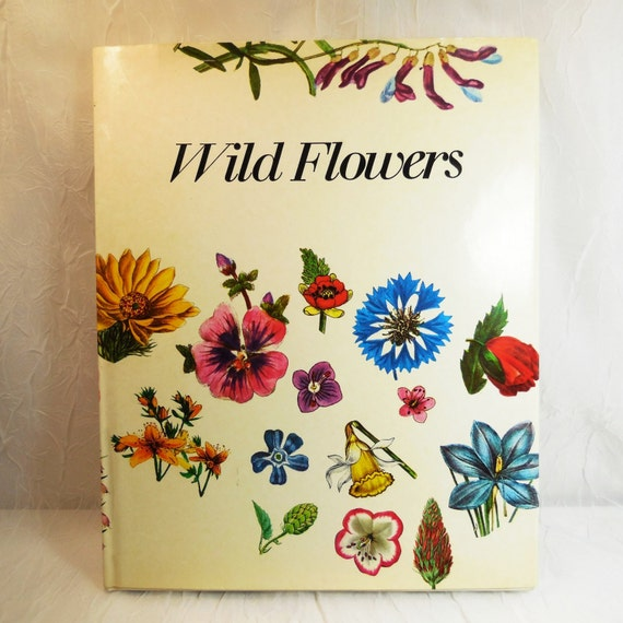 Wild Flowers - Matthias Hermann - First Edition 1973 - Botanical Illustrations - Vintage Collectible - Hardcover with Dust Jacket