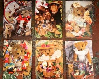 16 different Steiff Bear Notecards