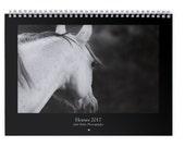 Horses 2017 Wall Calendar