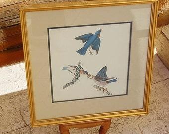Vintage Botanical Bluebirds Print