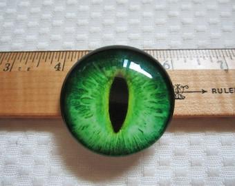Giant dragon eyes, big glass eyes