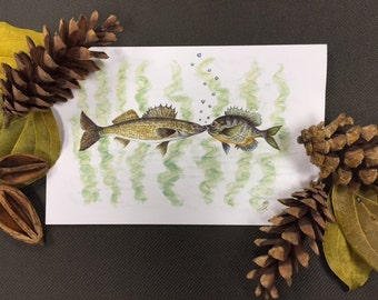 Kissing Fish Greeting Card