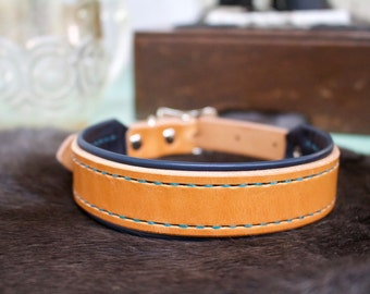Large Lined Custom Leather Dog Collar