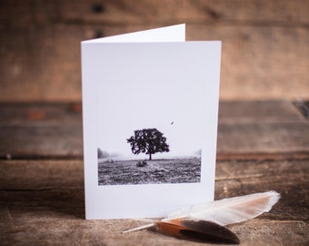 Greeting Card 12 // Tree, Black & White, Fog, Mystery, Flight, Bird, Hope, Landscape, Taking Off, Courage, Art Card