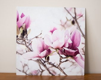 Magnolia Art, Floral Metal Print, Botanical Aluminum Art, Flower Picture, Square Ready to Hang Nature Photography, Metal Photo, Pink Decor