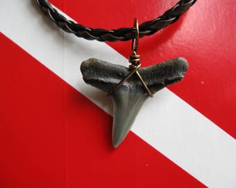 "Shark Tooth Necklace, Lemon Shark fossil, Venice-Florida, 18"" Braided leather, Bronze wire wrapped"