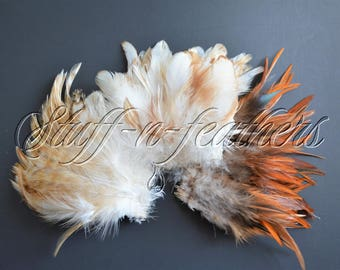 Rooster feathers Natural colors assortment, real feathers for crafts ivory beige brown mix earthy, millinery, jewelry 3-5 in long / FS21