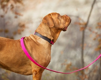 The Anduril Collar: Walnut & Pink Adjustable Leather Martingale Dog Collar