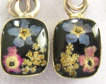 Small Sterling Drop Earrings.  Clear Glass Cabochons Magnifying the Dried Pink & Blue Flowers on Black Background.  Delicate.  Romantic.