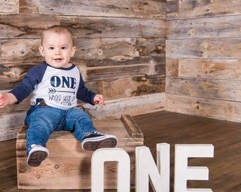 One Whole Year of Awesome custom birthday shirt, First Birthday boy outfit, Personalized Birthday Shirt, Boys First Birthday Outfit, I'm One