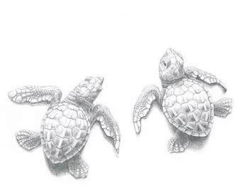 Hatchling sea turtles Greeting Card (code LK21)